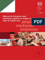 Material de formación sobre evaluacion y gestion deriesgos en el lugar de trabajo para medianas y  pequeñas empresas