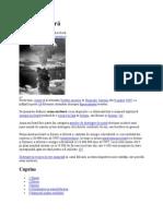 Armă nucleară, wikipedia
