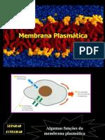 Aula 2-Estrutura da membrana plasmática