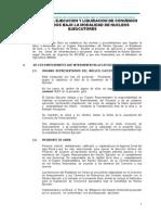 Texto Guía Ejecución NE_28 DIC 2009