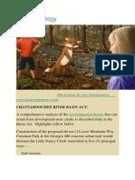 Creek Ecology