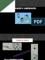 ascariasis-1