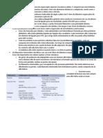 BFC Resumo 3 (Vitor)