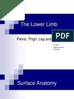 1 Lower Limb Skeleton 2013