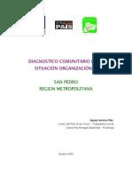 Diagnostico Organizacional Comunitario de San Pedro