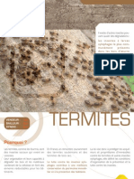 Diagnostic Les Termites