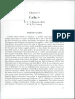 Cashew by E. V. V. Bhaskat-aRao & K. R. M. Swamy