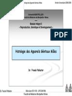 1er Cycle Pcem2 Mi5 Reproduction Histologie Des Appareils Genitaux Males Annee Universitaire