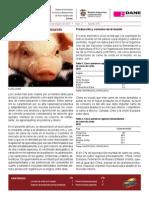 Cerdos (1)