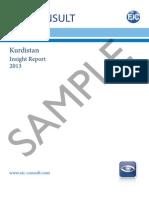 Kurdistan 2013 Exec Summary and Sample