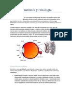 Retina - Final (1).docx