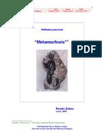 DMP Ch C01 Sukno,r Final Metamorfosis