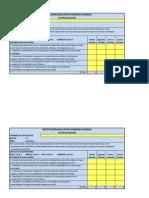 Formato Autoevaluación 5-3 (2014)