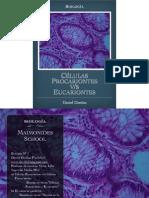 Celulas Eucariontes v:s Procariontes.pdf