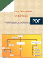 Matrices y Determinantes1
