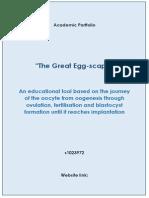 revision notes pdf