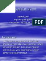 Mekanisme Nyeri 2012