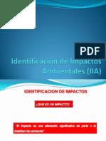 Identificación de Impacto Ambiental (IIA)