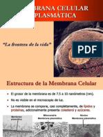 Clase 04 - Membrana Celular