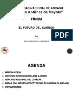 Presentacion Unasam Carbon