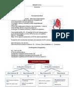Cardiologia ENARM
