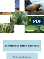 interactiunea biotop biocenoza