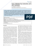 De Novo Biosynthesis of Biodiesel by Escherichia Coli in Optimized Fed-Batch Cultivation