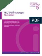 Fec-chemotherapy Fact Sheet