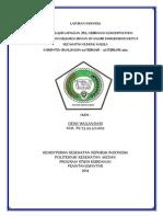 laporan individu.docx