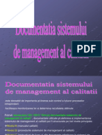 documentatiasistdemanagemet_m2_13_
