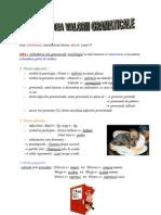 Referatele.org 2199 Schimbarea Valorii Gramaticale Prin Conversiune