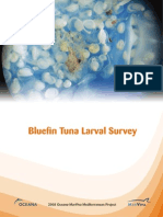 Bluefin Tuna Larval Survey