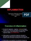 Dr.edati-25 March 2013-Inflammation and Repair