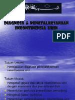 2.Diagnosis & Penatalaksanaan Inkontinensia Urin-IB