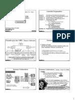 Aula 06 Classificao Dos Sistemas de Informao Baseados Em Computador - Sistemas Colaborativos