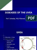 Kuliah Uvea & Lensa Internasional