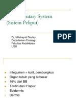 Sistem Integumentari