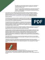 Spontaneous Bacterial Peritonitis Etio- Ddx