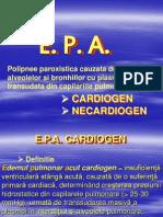 12 Epa