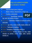 Manual de Aceros
