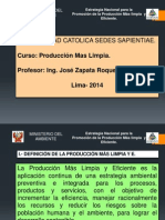 Estrategia Nacional para la P+L PERU.pptx