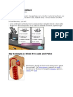 57535019 Circulatory Physiology