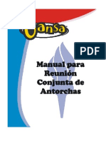 Manual Antorchas