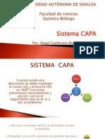 Sistema CAPA