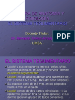 Sistema Tegumentario.ppt