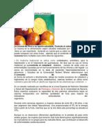 Consuma Cocona y Controle El Colesterol