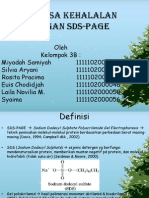 Teori Sds Page