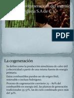 Planta de cogeneración  del ingenio La gloria SA de CVf