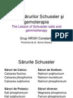 Lectia Sarurilor Schussler