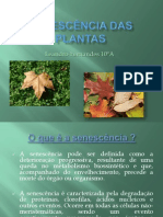 Senescência Das Plantas
